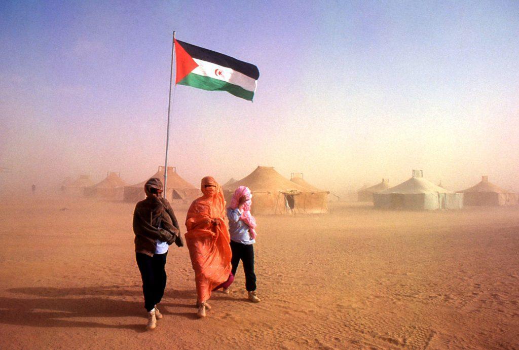 """""""Un año clave para el Sáhara"""", por Érika Reija"""